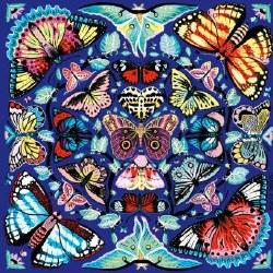 Kaleido Butterflies 500 Piece