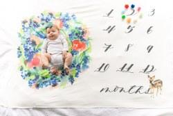 Swaddle Blankets Wren