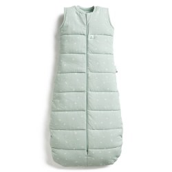 2.5 TOG Sleep Bag Sage 3-12m