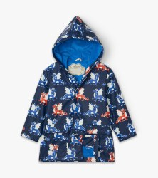 Color Changing Raincoat Dragon 4T