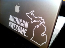 Michigan Awesome Decal
