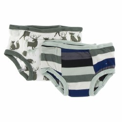 Training Pants Zoo Stripe 2T/3
