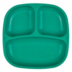 Divided Plates Teal