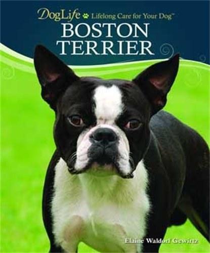 Dog Life Boston Terrier Bk
