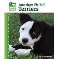 American Pit Bull Terriers Bk