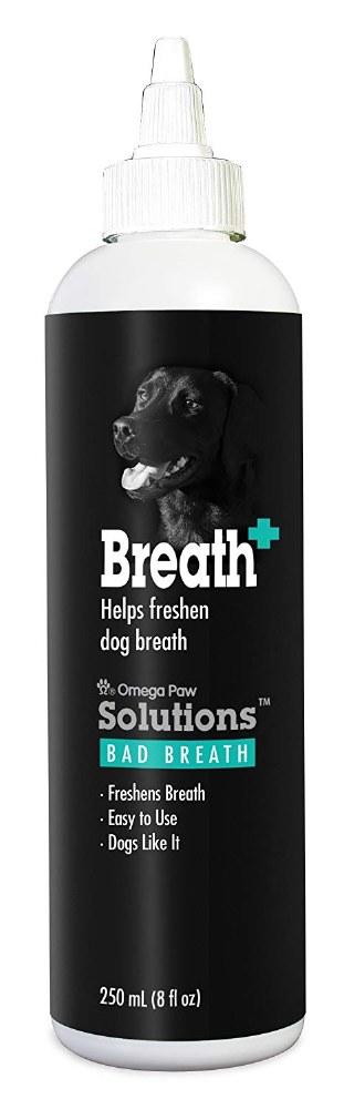 OmegaPaw Bad Breath Rmdy 8oz