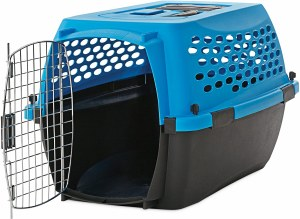 19 Inch Blue Dog Carrier