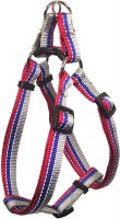 1x30-40 Red-Blue-Grey Harness