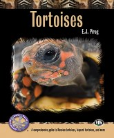 Tortoises Comprehensive Guide