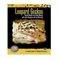 Leopard Gecko Paperback Bk