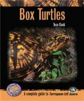 Box Turtles Paper Back Book