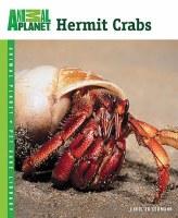 Animal Planet Hermit Crab Bk