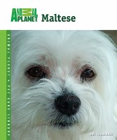 Animal Planet Maltese Book