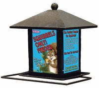 Squirrel Only Feeder