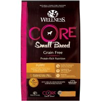 Wellness Core GF Trky-Slmn12Lb