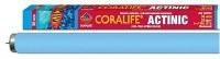 Coralife Flourorscnt Bulb 36in