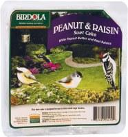 Birdola Pnut-Rasin Suet 11.5oz
