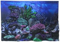 Aquarium Background 3D