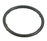 Coolant Flange Seal