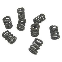 Autotech Heavy Duty Valve Springs Set 8v/16v