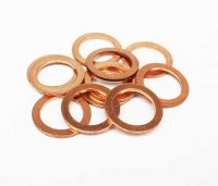 Oil Drain Plug Washers (10)