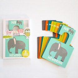 Lucy Darling - Closet Divider  Animals