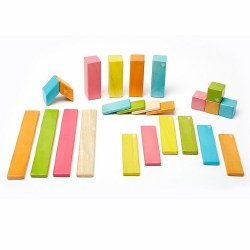 Tegu - Magnetic Wooden Blocks 24pc