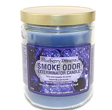 13oz Smoke Exterminator Candle Blueberry Dreamz