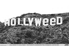 "24"" x 36"" Hollyweed Rolled Poster"