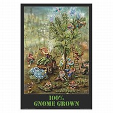 Gnome Grown Poster