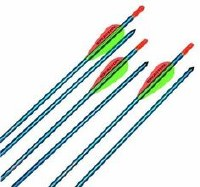 Easton Genesis Arrow 6 Pk Blu