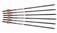 Ravin X-bow Bolts 400gr 6pk