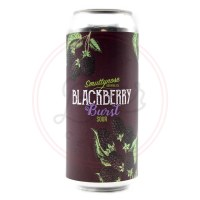 Blackberry Burst - 16oz Can