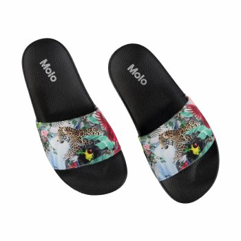 Zhappy Slides Amazon 13/1Y