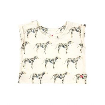 Finley Top Dalmatians 7