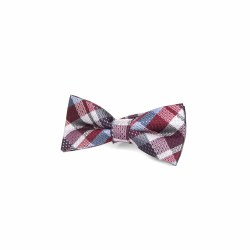 Bow Tie Rumba/Blue Plaid