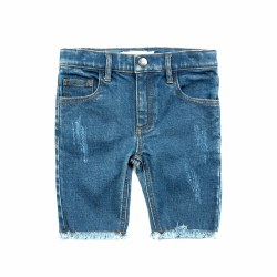 Rainbow Jean Shorts 3