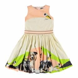 Carli Dress Aussie Shep 2/3