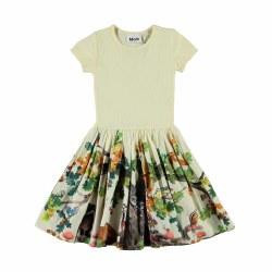 Cissa Dress From Acorn 3/4