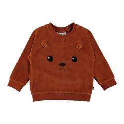 Derry Sweatshirt Iron 18M