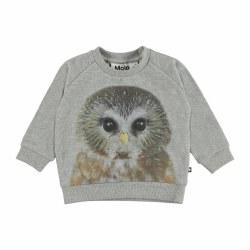 Disco Sweatshirt Owl 6M