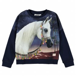 Marigold Top Arabian Horse 6