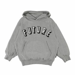 Maxx Future Hoodie Grey 5