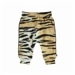 Shona Baby Pant Tiger 6M