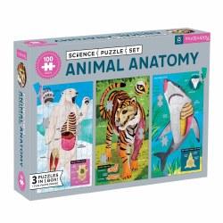 Animal Anatomy Puzzle