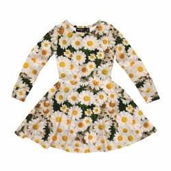 Daisy Days Waisted Dress 2
