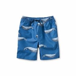 Azure Whale Full Trunks 5