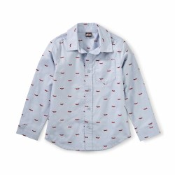 Button Up Shirt Oxford Fox 2