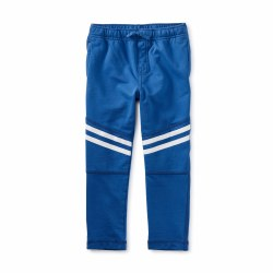 Speedy Stripe Pant Imperial 3