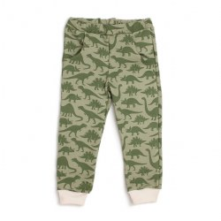 Sweatpants Sage Dinosaur 6